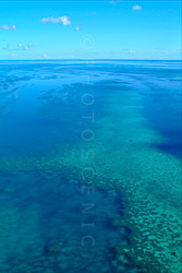 The_Great_Barrier_Reef_Scenic_Colour_Photos_011.jpg