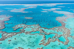 The_Great_Barrier_Reef_Scenic_Colour_Photos_014.jpg