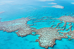 The_Great_Barrier_Reef_Scenic_Colour_Photos_018.jpg