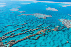 The_Great_Barrier_Reef_Scenic_Colour_Photos_019.jpg
