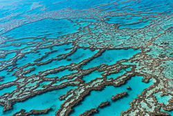 The_Great_Barrier_Reef_Scenic_Colour_Photos_023.jpg