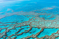 The_Great_Barrier_Reef_Scenic_Colour_Photos_024.jpg