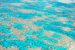 The_Great_Barrier_Reef_Scenic_Colour_Photos_027.jpg