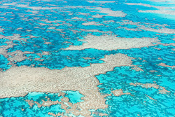 The_Great_Barrier_Reef_Scenic_Colour_Photos_030.jpg