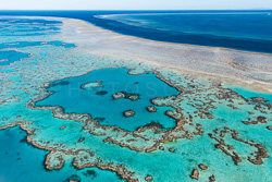 The_Great_Barrier_Reef_Scenic_Colour_Photos_034.jpg