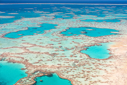 The_Great_Barrier_Reef_Scenic_Colour_Photos_040.jpg