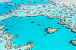 The_Great_Barrier_Reef_Scenic_Colour_Photos_043.jpg
